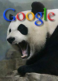 08b20a4502a6f1fca3e29fd69235595c--animal-faces-pandas